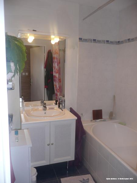 Carrelage salle de bain rennes for Renovation salle de bain rennes